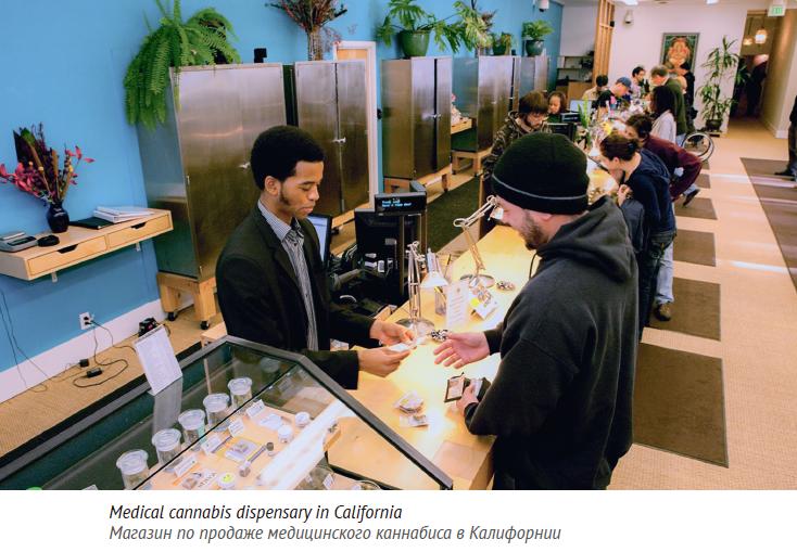 Магазин по продаже медицинского каннабиса в Калифорнии
