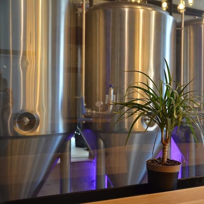 Під час карантину: у Львові відкрили ресторан-пивоварню