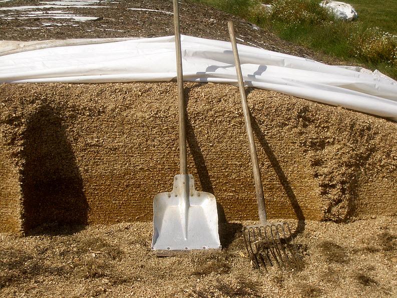 Пивную дробину используют для создания еды и биотоплива